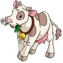 cow-1-small